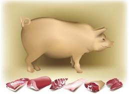 Nose to Tail - Le Petit Cochon